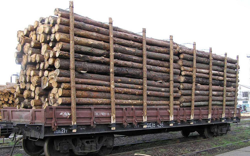Правила перевозки древесины