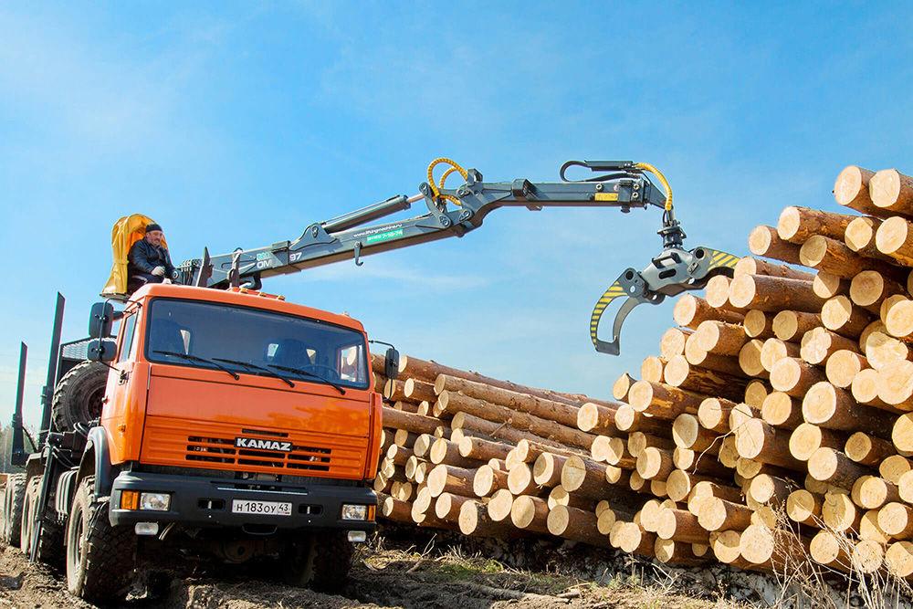 Процесс перевозки древесины