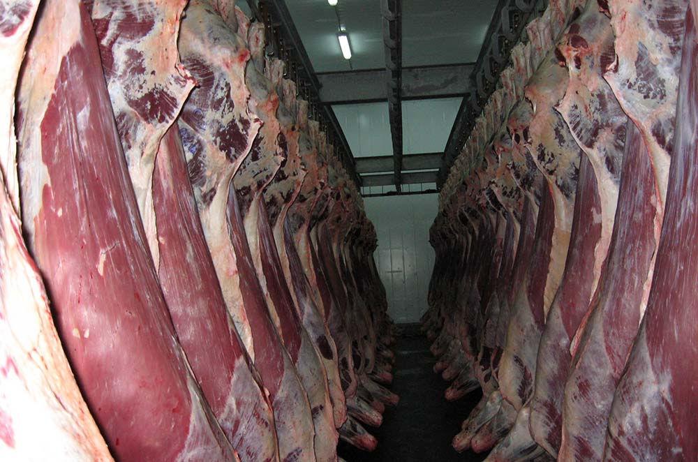Транспортировка мясных туш