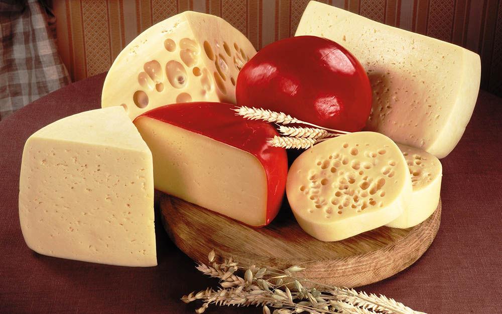 Транспортировка сырных продуктов