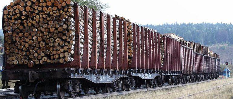 Особенности перевозки леса и лесоматериалов железнодорожным транспортом